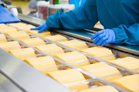 107634455-industrial-production-of-hard-cheeses-cheese-is-very-tasty-and-healthy-product